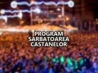 FESTIVALUL CASTANELOR 2015: Aflaţi ce artişti vor urca pe scenă joi, 24 septembrie