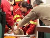 Fetiţă de 6 ani readusă la viaţă după ce s-a înecat la ştrandul din Satu Mare!