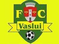 Fotbal: Bucurie mare la FC Vaslui după victoria cu CFR Cluj