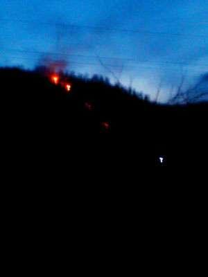 FOTO - 39 hectare de vegetație uscată au ars în ultimele 24 de ore în Maramureș, inclusiv în Sighet