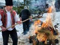 FOTO: BORȘA - Ritualul sacrificării porcului în preajma sărbătorilor de Crăciun