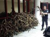 FOTO - Cetățean din Cehia prins în vama Petea cu 680 de coroane de cerb