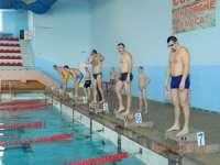 FOTO - Concurs de înot organizat de către jandarmii maramureşeni