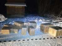FOTO - Peste 16.000 de pachete de ţigări de contrabandă, confiscate la frontiera de nord