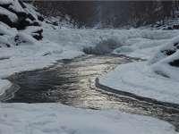 GALERIE FOTO - Râul Lăpuş, îngheţat bocnă