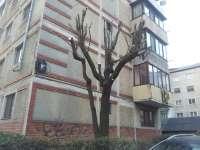 FOTO: Vine, vine primăvara - Începe războiul administrației Nemeș împotriva spațiilor verzi din municipiu