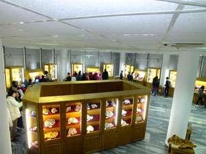 FURT la Muzeul de Mineralogie din Baia Mare. O piesă valoroasă a dispărut