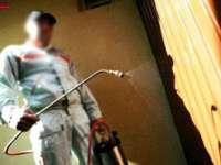 FURT: Sub pretextul că efectuează servicii de deratizare, au sustras 6.000 de lei dintr-o locuinţă