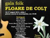 """Gala Folk """"Floare de colț"""" cu artiști mari la Sighetu Maramației"""