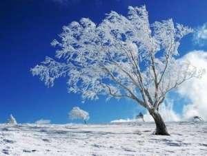 GER: Minus 23,6 grade Celsius - cea mai scăzută temperatură înregistrată la nivel național