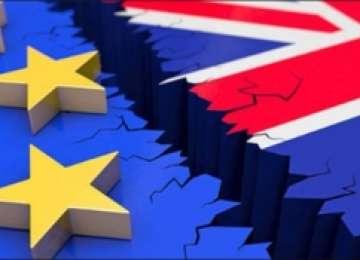 Germania impune prima condiție în negocierile cu Marea Britanie după declanșarea Brexitu-ului