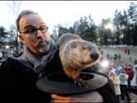 Groundhog Day: Marmotele se contrazic în privința sosirii primăverii