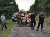 HOȚII DE LEMNE MARAMUREȘENI – Au refuzat să fie legitimați de jandarmi și i-au înjurat pe silvicultori