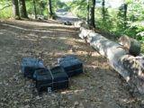 Ţigări transportate cu moto-deltaplanul şi contrabandişti opriţi cu focuri de armă