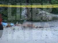 Imagini cutremurătoare de la locul unde a murit mama Monicăi Gabor