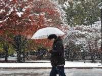 În Tokyo a nins pentru prima oară în noiembrie în ultimii 54 de ani