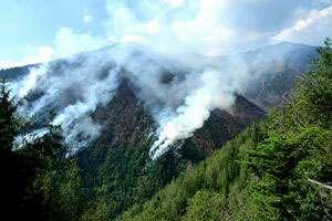 Incendiul de pe versantul Toroioaga a fost stins după cinci zile de intervenţii susţinute