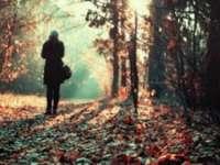 Începând cu data de 11 noiembrie vremea se va răci într-un ritm accentuat