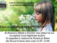 """INEDIT - Cerul Sighetului va fi """"umplut de flori"""" în Duminica Floriilor"""