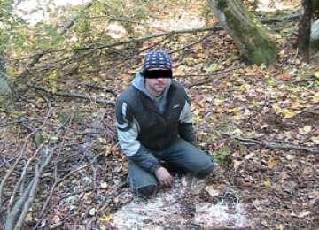 Infracțiuni silvice depistate de jandarmi în zona Sighetului