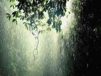 Instabilitate atmosferică și disconfort termic, miercuri și joi