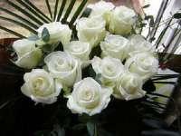 Ion Iliescu a primit de la Traian Băsescu un buchet de trandafiri albi, de ziua onomastică