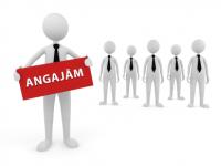 IPJ Maramureş organizează CONCURS/EXAMEN pentru ocuparea a două posturi de personal contractual la Serviciul Logistic