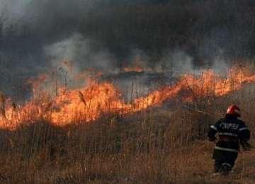 ISU Maramureș - Incendii de vegetație uscată în lanț