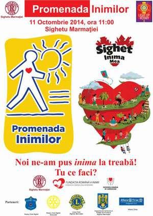 Jandarmii vor asigura măsurile de ordine publică la Promenada Inimilor, în municipiul Sighetu Marmaţiei