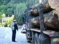 La Săpânţa, Sarasău şi Borşa, poliţiştii au verificat legalitatea transporturilor de material lemnos