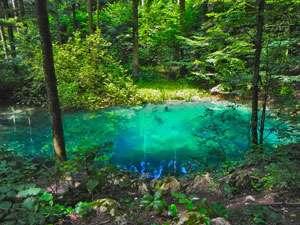 Lacul Albastru din Baia Sprie, monument al naturii, va fi introdus în circuitul turistic
