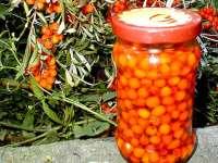 Leacuri din grădina noastră: Catina, un aliment-medicament