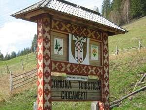 Localitatea Ciocăneşti din Suceava, desemnată Satul cultural al României 2014