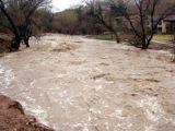 Mai multe gospodarii din Maramures au fost inundate