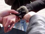 Mandat european de arestare pus în aplicare de poliţiştii sigheteni