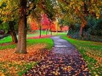 MARAMUREŞ: Aflaţi cum va fi vremea până în 19 octombrie
