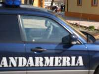 MARAMUREŞ: Aproximativ 170 de mandate de aducere executate de către jandarmi