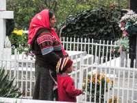 MARAMUREŞ: Cerşetorii `bântuie` prin cimitire de luminaţie. Fură flori şi coroane, după care le revând în piaţă