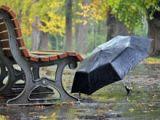 MARAMUREŞ: Cod Galben de ploi abundente până marți dimineață