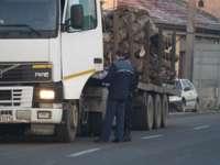 MARAMUREŞ: Controale pentru depistarea transporturilor ilegale de material lemnos
