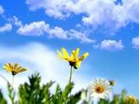 MARAMUREŞ: Prognoza meteo pentru următoarele două săptămâni