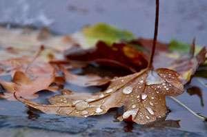 MARAMUREŞ: VREMEA până pe 5 octombrie. Aflaţi când scăpăm de ploi