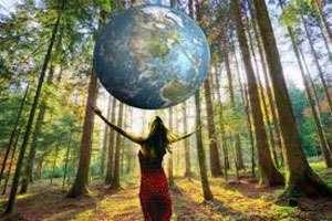MARAMUREŞ: Ziua Mondială a Mediului derulată sub egida