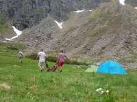 Maramureș: Braconajul unei capre negre în Munții Rodnei, în atenția poliției și procuraturii