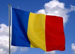 MARAMUREȘ - Drapelul Național a fost incendiat de ziua națională de către autori necunoscuți