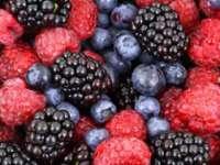 Maramureș: Fructele de pădure, un produs exportat cu succes pe piața europeană