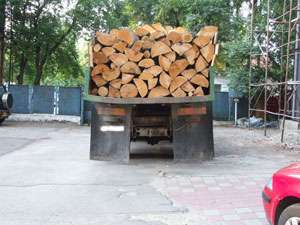 MARAMUREȘ - Transportatorii de material lemnos s-au ales cu lemnul confiscat și amendați