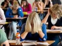 MARAMUREȘ: Un elev a fost eliminat de la examenul de Bacalaureat