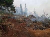 MARAMUREȘ - Val de incendii de vegetație