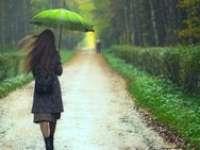 MARAMUREȘ: Vreme instabilă și intervale cu ploi însemnate cantitativ, în perioada 9 - 22 mai